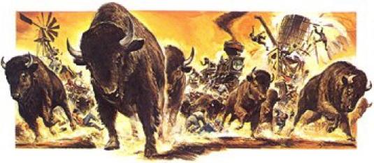 stampeding buffalo 1