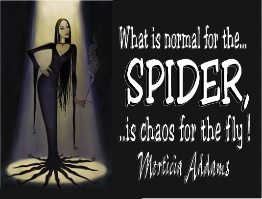 Morticia Addams - spider and the fly