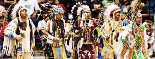 ethnic native Americans