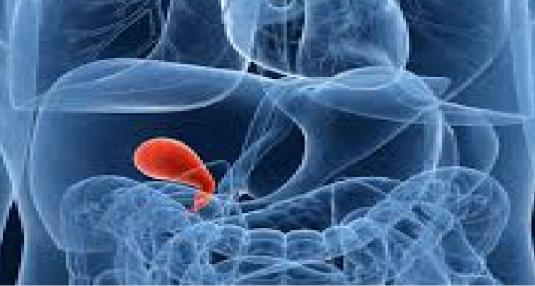 gallbladder 3