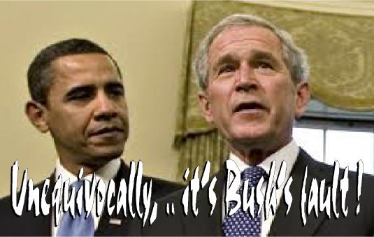 it's Bush's fault 2
