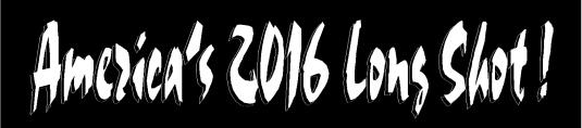 2016 Long shot 2