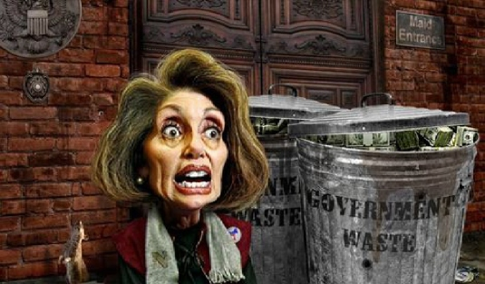 Pelosi government waste 2