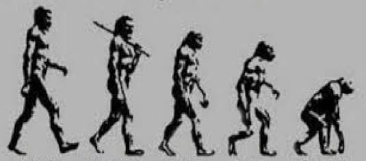 reverse evolution 3b