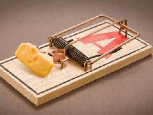 no free lunch - mousetrap