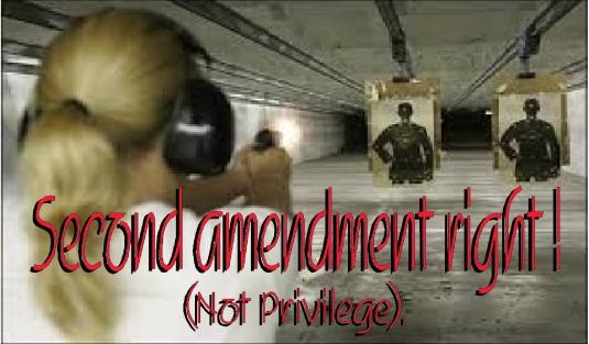 Second Amendment right 2