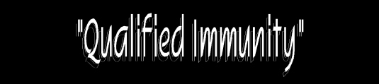 qualified immunity 2