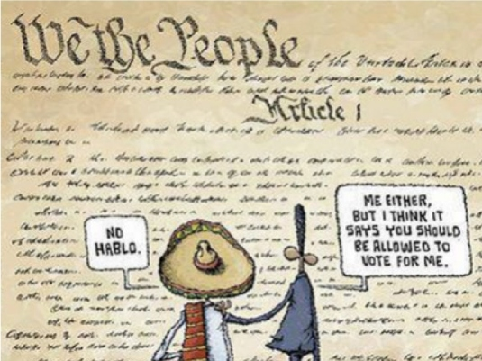 we the people - illegal vote 1a