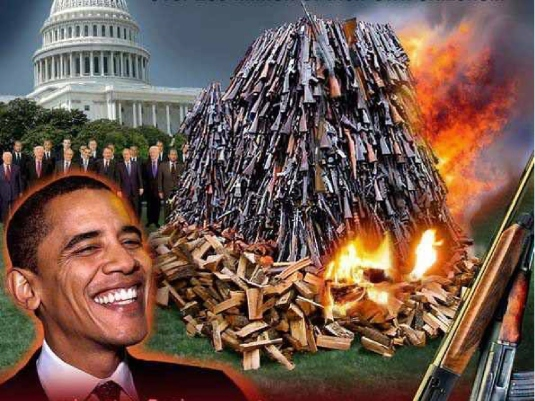 Obama gun confiscation 2