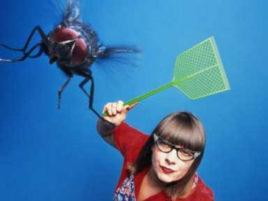 swatting  fly 1a